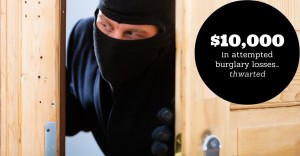 TOH Graphic - Thwarted Theft